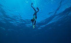 apnee kerguelen sports ocean larmor-plage