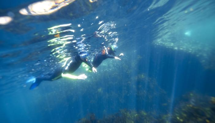Plongée sous-marine Lorient