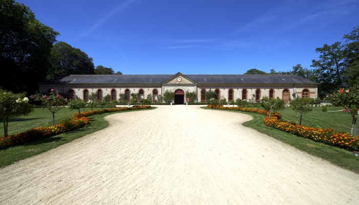 musee-haras-national-hennebont-56