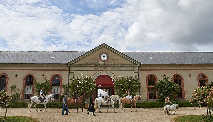 haras national hennebont